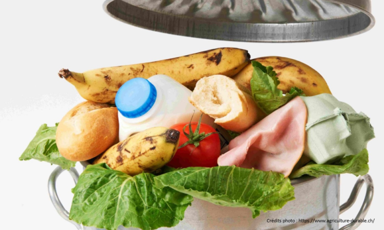 image_gaspillage_alimentaire